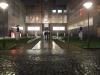 swarming-in-the-rain_med